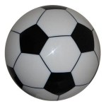 ABS Soccer Ball